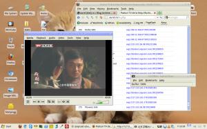 Posturi TV online in Ubuntu